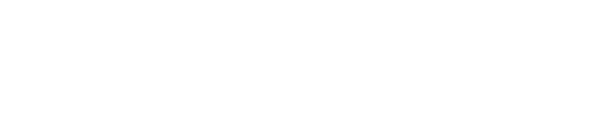 moon watches logo
