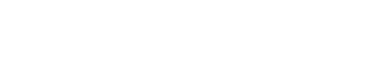 The Present Tree Website Design