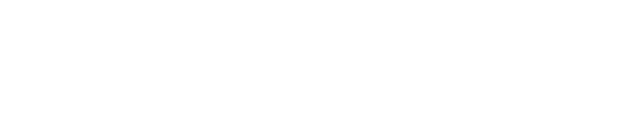 diamond electronic systems brand design